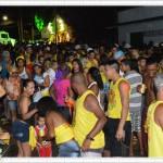 Bandas e blocos fazem a festa no carnaval gaspariense 4