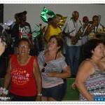 Bandas e blocos fazem a festa no carnaval gaspariense 5