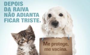 Levy Gasparian promove vacinacao antirrabica animal