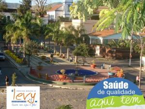 saude-levy-800x600